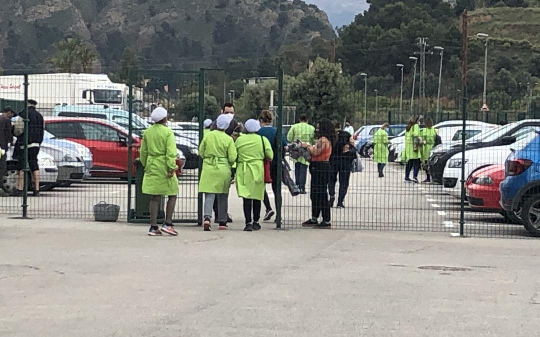[Murcia] Reparto en fábrica envasado de cítricos